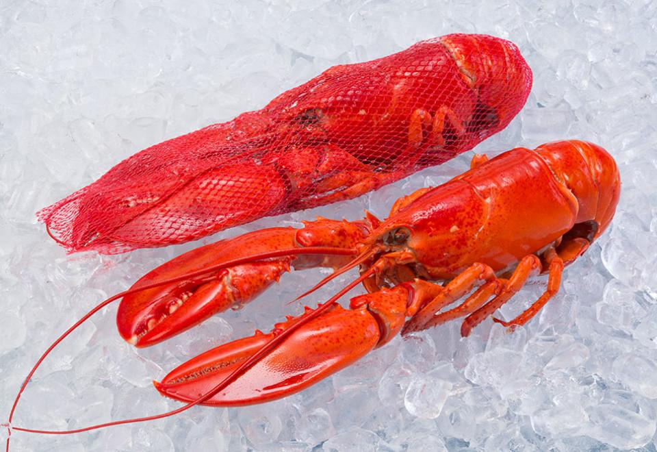 熟龙虾(整只/网袋)
