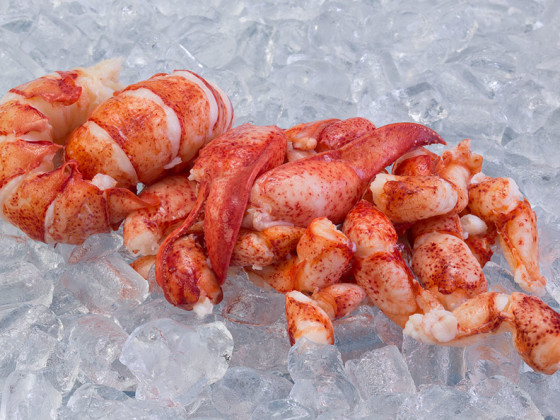 TCK Lobster Meat – Whole Pieces