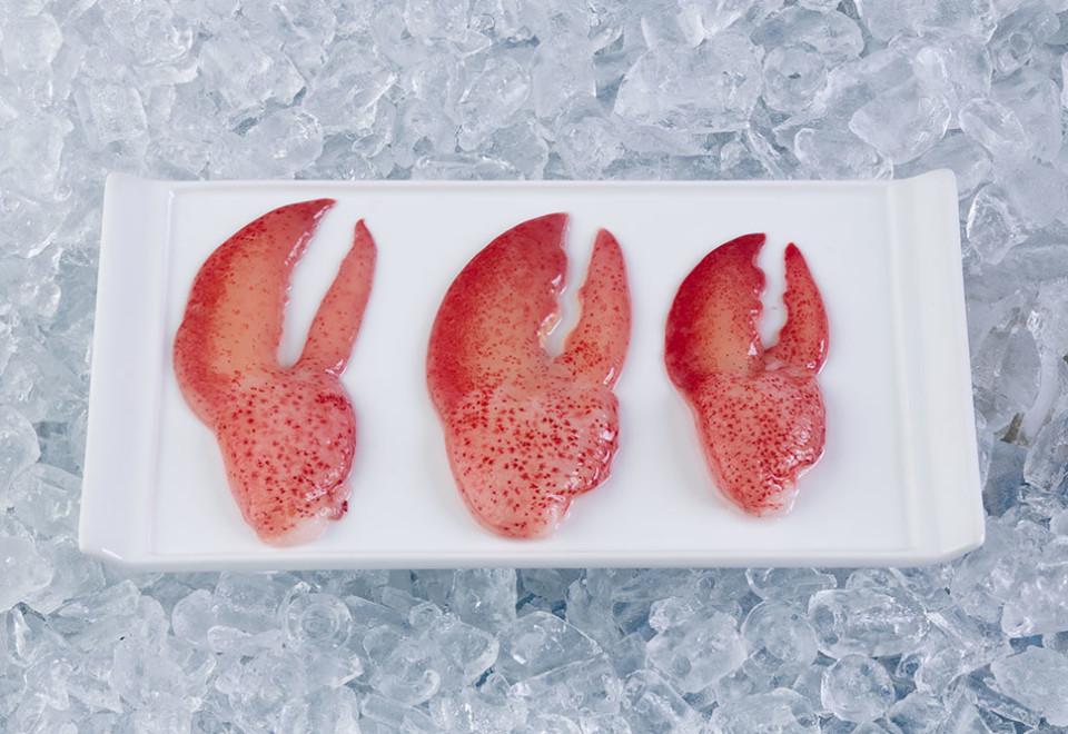 Pinces de homard THP (crues)